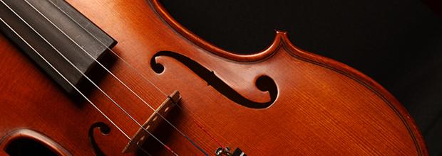 *Violin Lessons